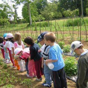 fattoria didattica orto biologico
